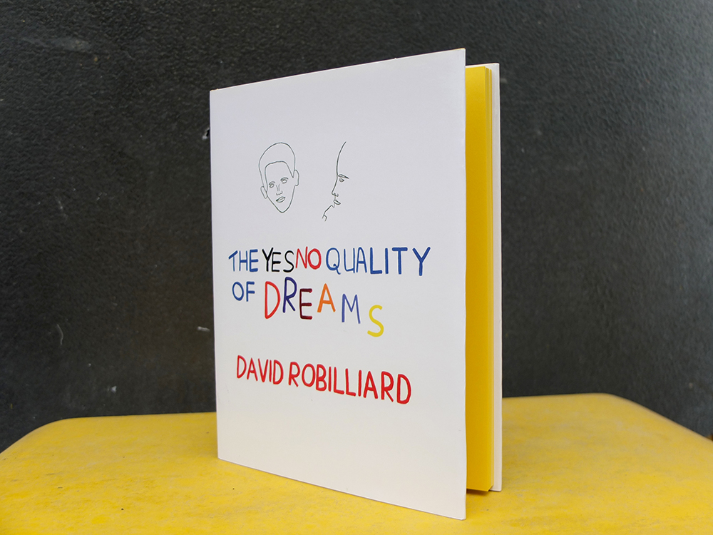 ROBILLIARD, David - The Yes No Quality of Dreams [ROMA 222]